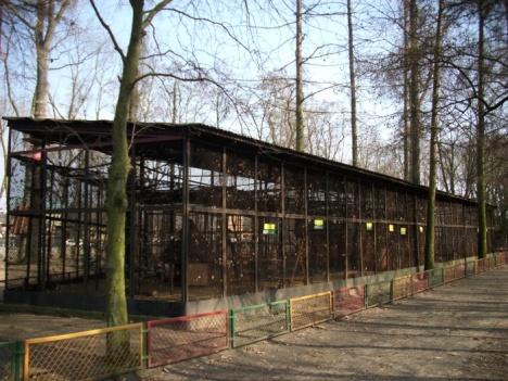 Woliery dla ptaków - Mini Zoo Leszno