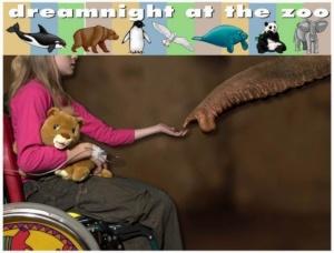 """""""Dreamnight at the ZOO - Wieczór (Noc) Marzeń w ZOO"""" - plakat promujący akcję"""