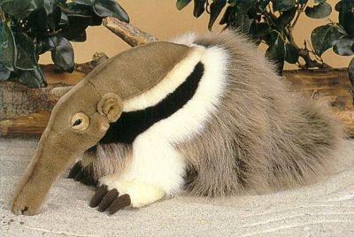 Mrówkojad pluszowy