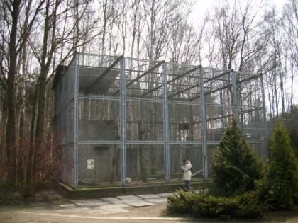 Woliera w której mieszkał Telly podczas swojego wieloletniego pobytu w Bydgoszczy