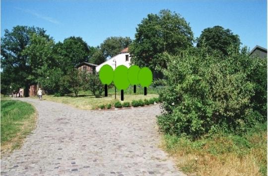 Sad starych odmian drzew owocowych (z planów Pana M. Nakoniecznego)
