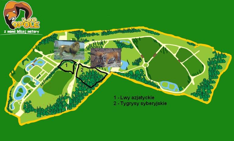 Przewodnik Po Zoo Opole Mrowkojad I Przyjaciele