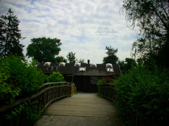 Widok na most prowadzący do pawilonu mrówkojadów (w tle)