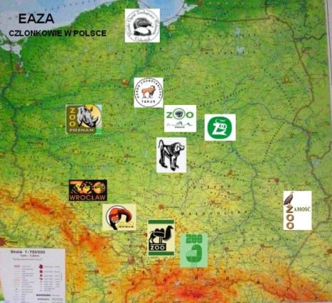 Polskie ogrody zoologiczne nalezące do EAZA