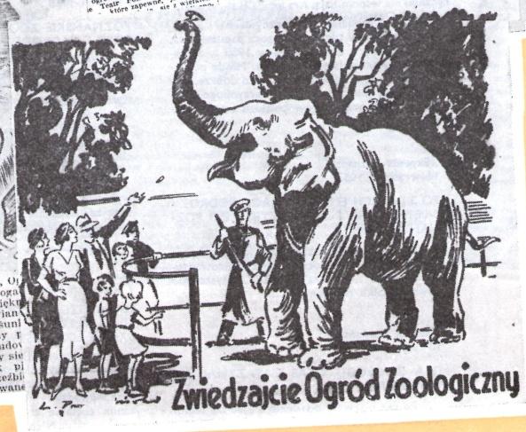 Poznańska prasa zachęca do odwiedzania ogrodu zoologicznego