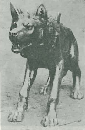 Zdjęcie rzeźby wilka pochodzące z początku lat 70. (fot. M. Noweaczyk) - jak widać, nic się nie zmieniła...