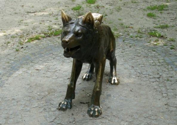Rzeźba wilka z poznańskiego Starego Zoo
