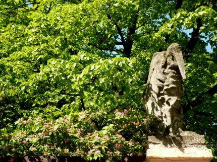 Marabut wśród gałęzi (fot. pochodzi ze strony www.fotopoznan3.blogspot.com)