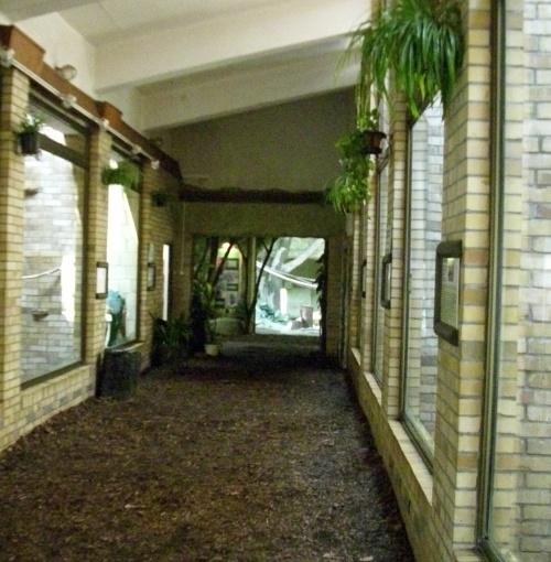 Wnętrze pawilonu Madagaskaru - zoo Opole