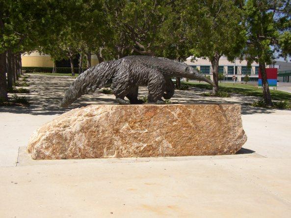 Mrówkojad - pomnik na terenie UCI w Irvine