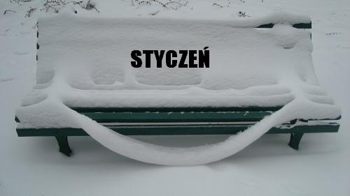 """""""Uśmiechnięta ławka"""" w poznańskim Nowym Zoo - 16 stycznia 2010"""