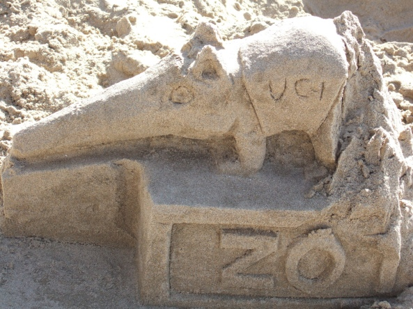 Rzeźba z piasku przedstawiająca mrówkojada, symbol Universitet of California w Irvine