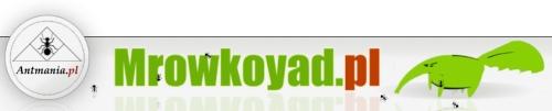 Logo strony Mrowkoyad.pl