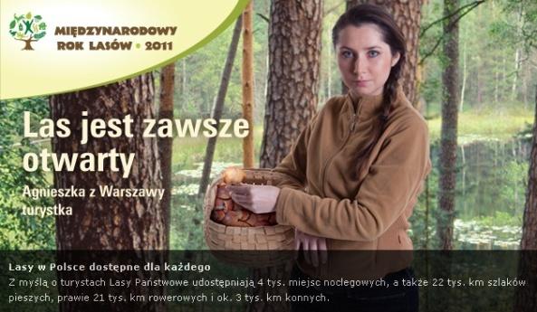 Międzynarodowy Rok Lasów (źródło: www.lasy.gov.pl)