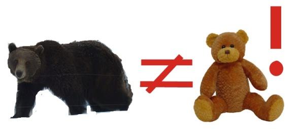 Niedźwiedź i miś to nie to samo!