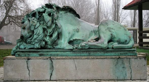 Śpiący lew z warszawskiego zoo