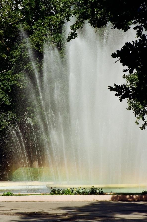 Fontanna w kaliningradzkim zoo (fot. M. Nakonieczny)