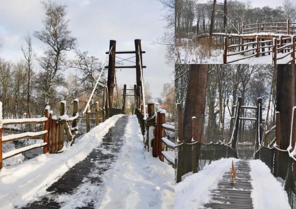 Most prowadzący do sawanny; po prawej rudy kot, który jest jednym ze stałych bywalców zoo.