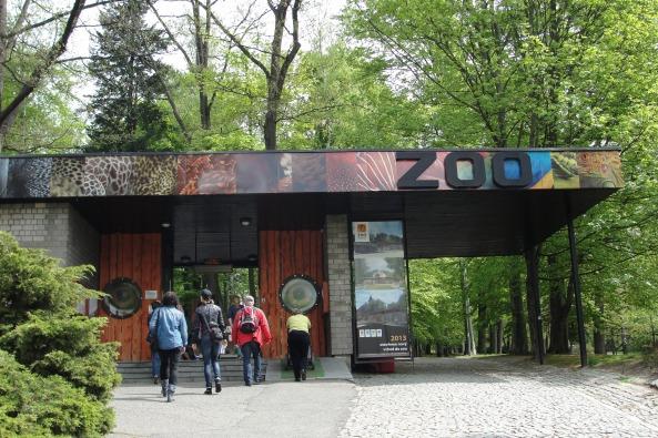 Wejście do zoo