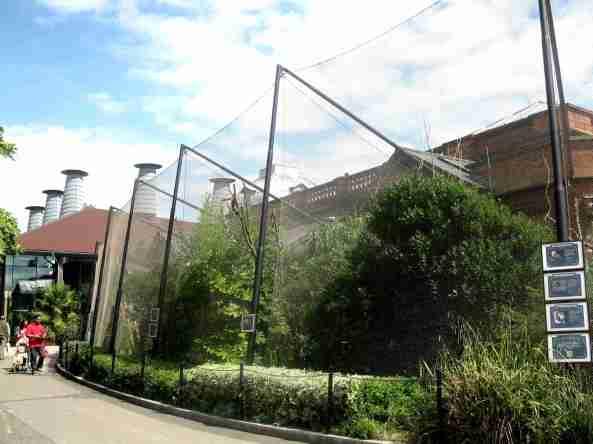 Woliery przylegające do ptaszarni (Blackburn Pavilion)