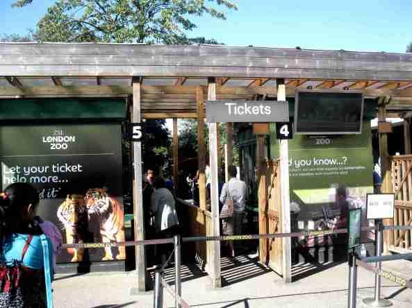 Zoo Londyn, sierpień 2013 003