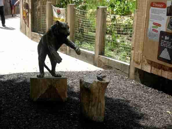 Zoo Londyn, sierpień 2013 246