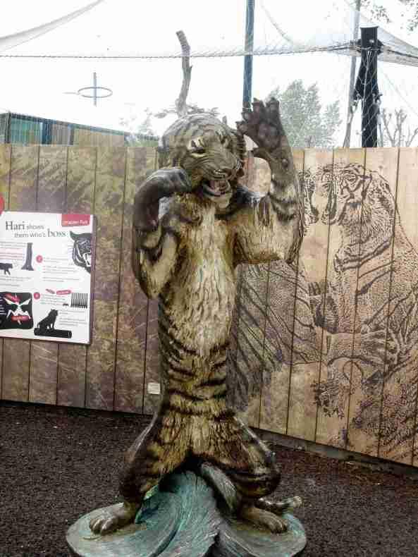 Zoo Londyn, sierpień 2013 642