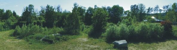 Panoramiczne ujęcie wybiegu lwów
